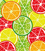 Vector clipart: Colorful background of fruit citrus in cut